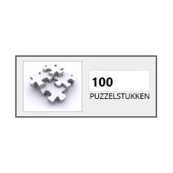 100 stukjes