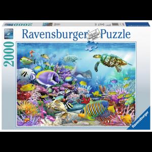 Puzzel 2000 in het koraalrif