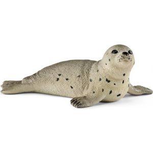 Schelich 14802 jonge zeehond