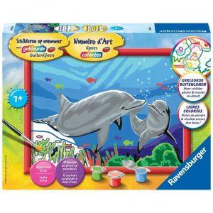 Schilderen Op Nummer Dolfijn