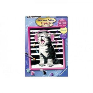 Schilderen op nummer Zingende kat